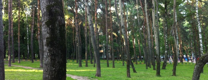Парк «Сосенки» is one of Сады и парки Москвы.