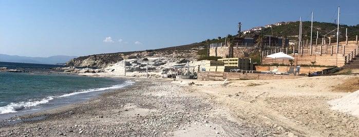 Paradiso Beach & Resort is one of Horeca visit.