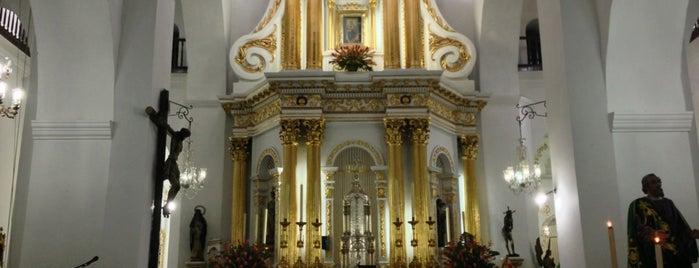 Basílica Menor de Nuestra Señora de La Candelaria is one of Medellín.