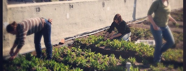 Brooklyn Grange Rooftop Farm is one of Ethical & Sustainable Local Businesses.