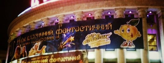National circus of Ukraine is one of В 2014му.