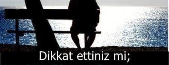 Doğa Koleji is one of 2018.