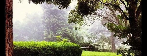 Aquário Poços de Caldas is one of Poços.