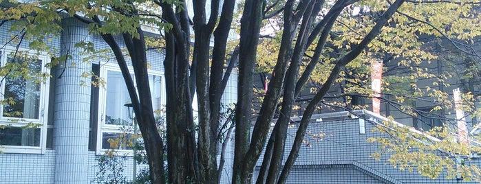 人口二十五万到達記念植樹 is one of 近現代.