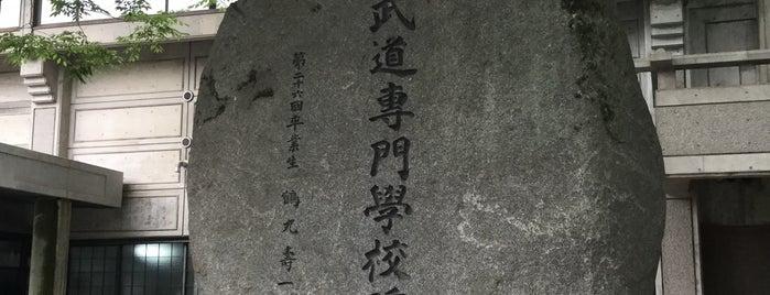 大日本武德會 武道専門學校碑 is one of 近現代.
