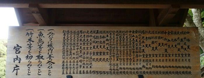 陽光太上天皇 月輪陵 is one of 天皇陵.