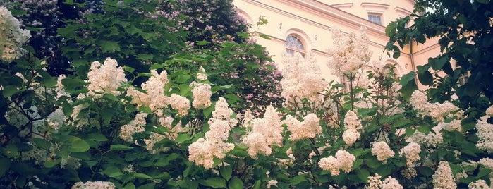 Vartiovuori is one of Best in Turku.