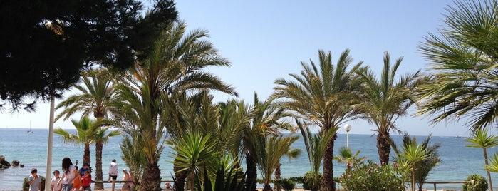 Calas del Este / Carloti is one of Playas.