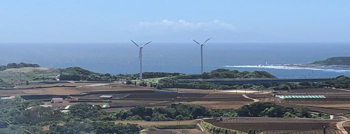岩堂山山頂 is one of 三浦半島の山々.