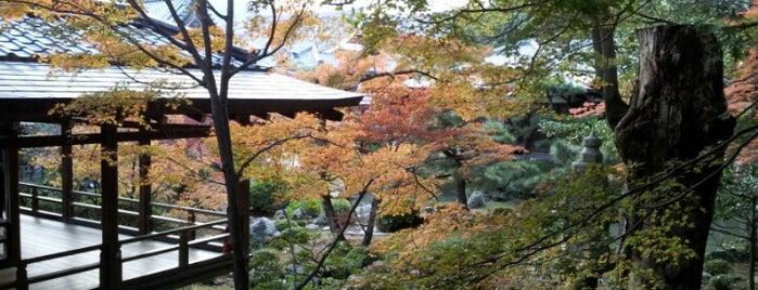 Free stuff Kyoto