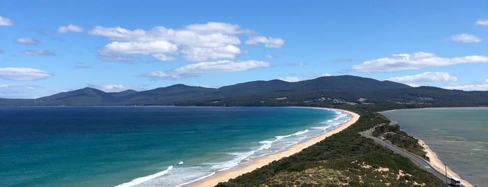 Bruny Island Neck Game Reserve is one of Oz.