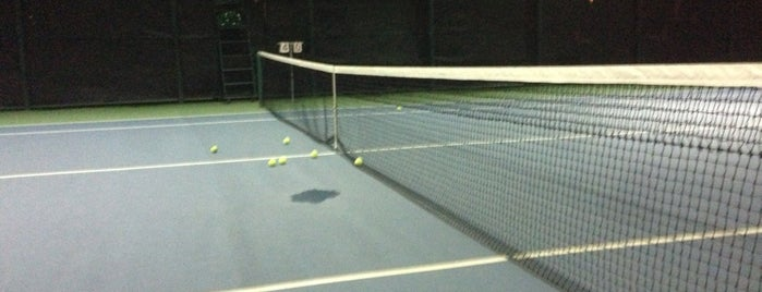 Tennis Court, Elite Club is one of Ace Badge (Tennis Court) in Jakarta Indonesia.