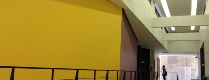Faculdade de Artes Visuais (FAV) is one of UFG (Câmpus II).