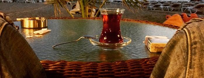 Balıkçılar Lokali is one of antalya~ alanya~ side~belek.