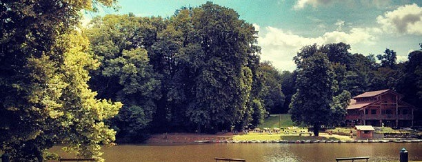Ter Kamerenbos / Bois de la Cambre is one of Things to visit in Brussels.