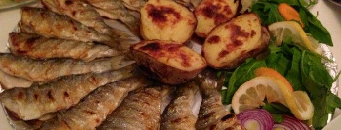 Poyraz Balık is one of En sevdiğim.
