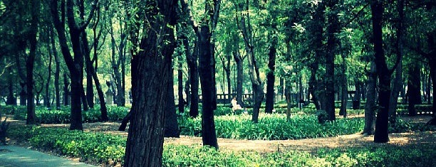 Bosque de Chapultepec is one of DF.