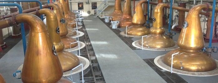 Glenfiddich Distillery is one of Scotland.