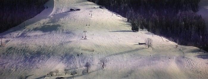 Bergbahn Hohe Salve is one of Skiwelt Lifts.