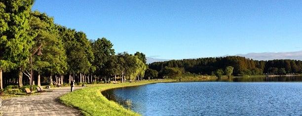Mizumoto Park is one of 日本の都市公園100選.