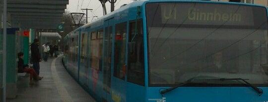 U1 Ginnheim - Südbahnhof is one of Maarten's day.