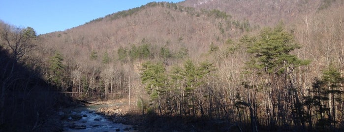 Goshen Pass Natural Area Preserve is one of The Great Outdoors.