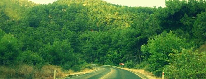 İzmir - Çanakkale Yolu (D550) [E87]