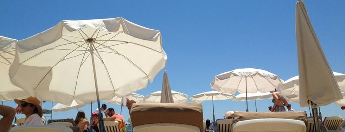 C Beach is one of Cannes - Must do.