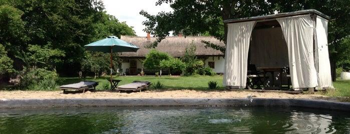 Homoki Lodge is one of countryside • hungary • sleep.