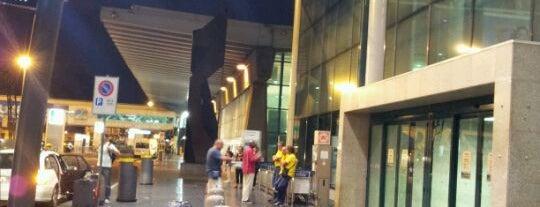 "Flughafen Rom-Fiumicino ""Leonardo da Vinci"" (FCO) is one of World Airports."