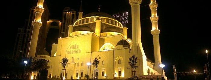 Mimar Sinan Camii is one of muğla 14.