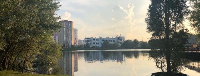 Dellini is one of Kyiv.