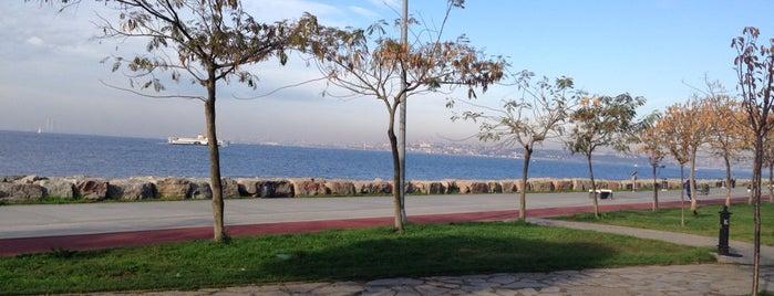 Kadıköy Moda Sahil Parkı is one of İstanbul.