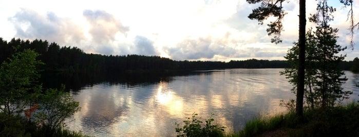 Озеро Плетневое (Пистолет) is one of Don't forget.