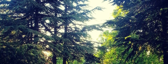 Meclis Parkı is one of EN FAVORİ MEKANLAR!!!!!!!!!.