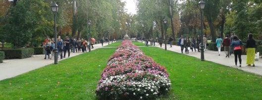 Parque del Retiro is one of Madrid by Locals.