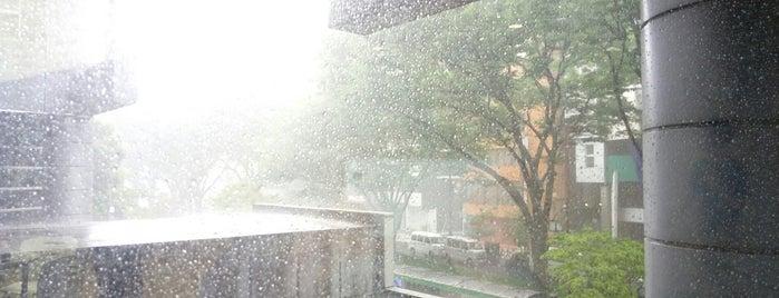 東京都立新宿山吹高等学校 is one of 都立学校.
