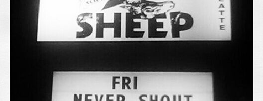 The Black Sheep is one of Colorado's Music Venues.