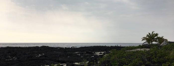 Kohanaiki Beach Park is one of da aina.