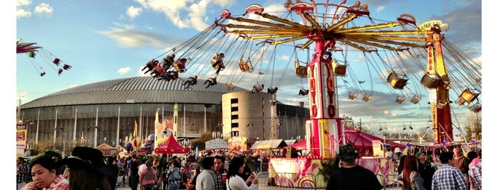Houston Livestock Show and Rodeo is one of Places tried: recommend.