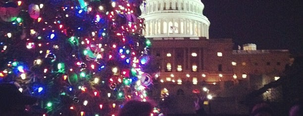 Capitol Christmas Tree is one of December in DC.