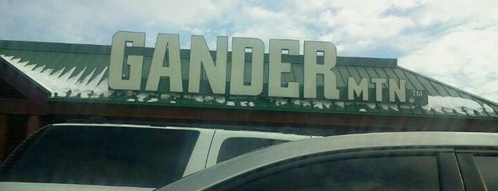 Gander Mountain is one of Paducah.