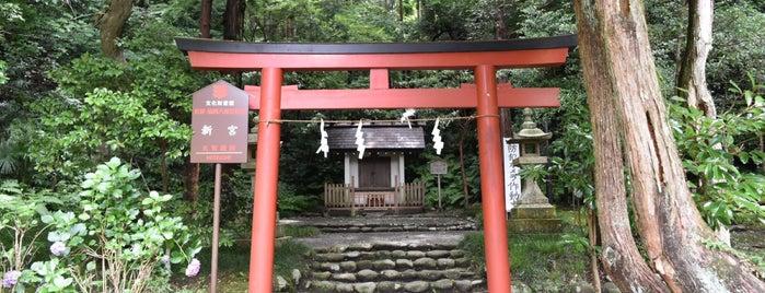 鶴岡八幡宮 今宮 (新宮神社) is one of 神奈川県鎌倉市の神社.