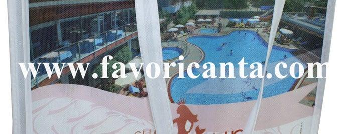 Jasmine's Restaurant is one of Turkiye Hotels.