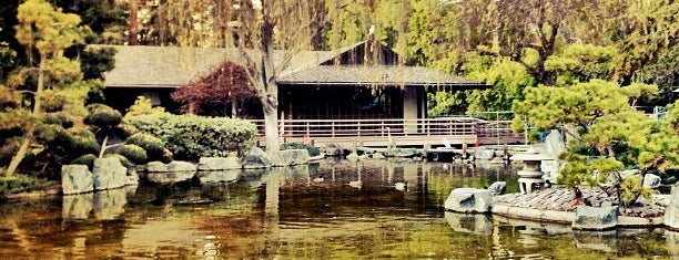 Japanese Friendship Garden is one of CA Bay Area.