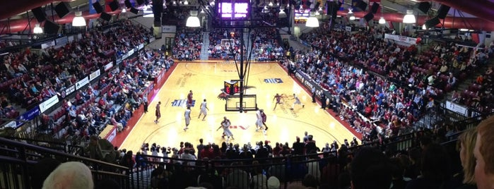 Hagan Arena is one of Sporting Venues To Visit.....
