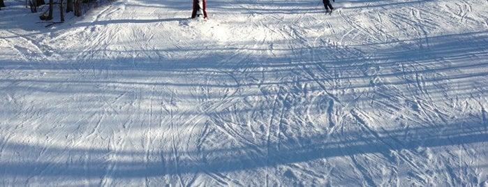 Mohawk Ski Area is one of Ski Bum (Worldwide).
