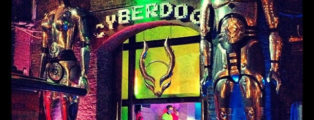 Cyberdog is one of My travel.