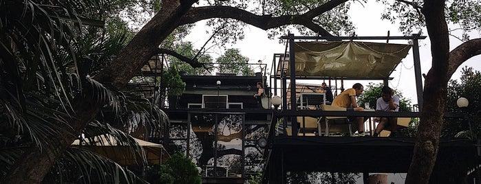 Bangkok Tree House is one of Getaway | Hotel.