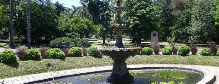 """Jardín Botánico """"Prof. Atilio Lombardo"""" is one of Montevidéu."""